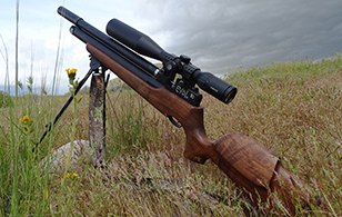 EVOL Classic Carbine - Soon!